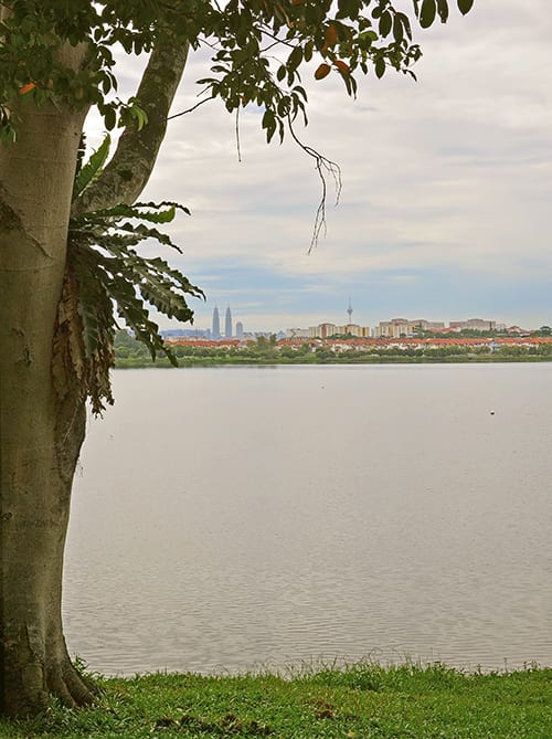 kepong metropolitan park twin towers view small