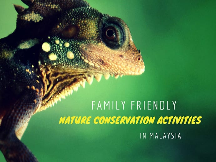 nature conservation activities web