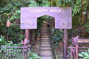 KL Eco Forest and Canopy Walk